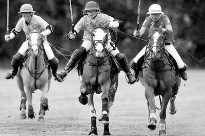 Three polo players