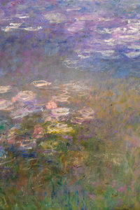 Water Lilies VII