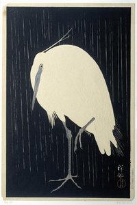 Silverherron in the Rain