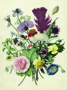 Bouquet of Flowersers